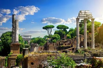 Ruined Roman Forum