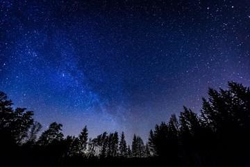 Night sky over rural landscape