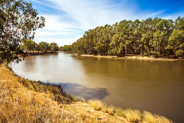 Am Murrumbidgee River bei Narrandera Noth South Wales Australien