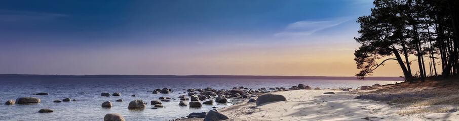 Panoramic view of a rocky island beach with pine trees on the sand at sunset.