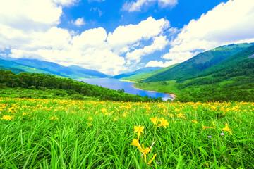 夏の高原と湖