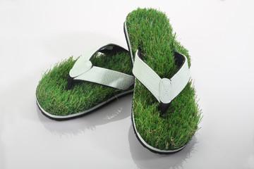Green Grass Slipper / Flip Flops on White Background