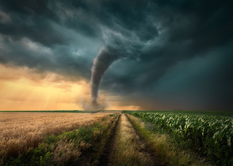 Tornado uderzyło w pola uprawne o zachodzie słońca