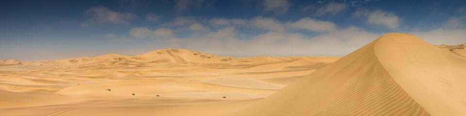 Panorama of yellow sand dunes