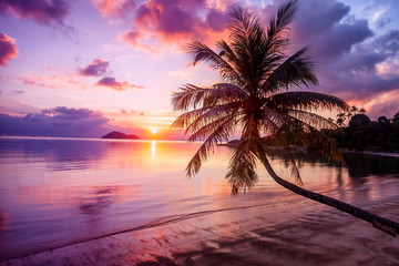 Beautiful bright sunset on a tropical paradise beach