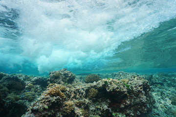 Wave breaking on the reef from underwater, Pacific ocean, Huahine, Society islands, French Polynesia