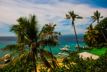 Apo island, Philippines, view on island beach line. Palm trees, sea and boats.