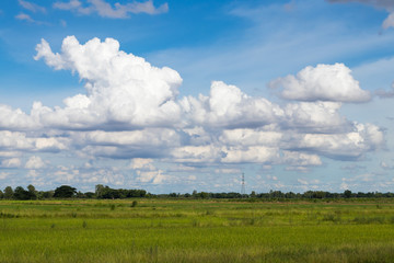 Cloudy sky over paddy countryside.