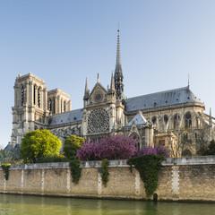 Cathédrale Notre-Dame de Paris avec la flèche de Violet Leduc