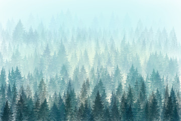 Trees in morning fog. Digital painting.