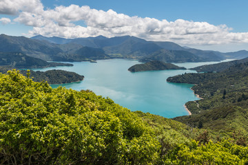 aerial view of Queen Charlotte Sound in Marlborough Sounds, South Island, New Zealand