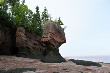 Hopewell Rocks NB, Kanada