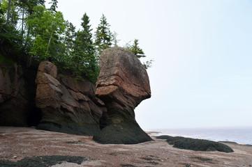 Hopewell Rocks NB, Canada