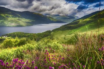 Loch Lomond from the Slopes of Ben Lomond