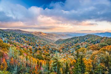 Park Narodowy Smoky Mountains