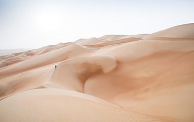 Rub al Khali Desert w Empty Quarter, w Abu Zabi w Zjednoczonych Emiratach Arabskich