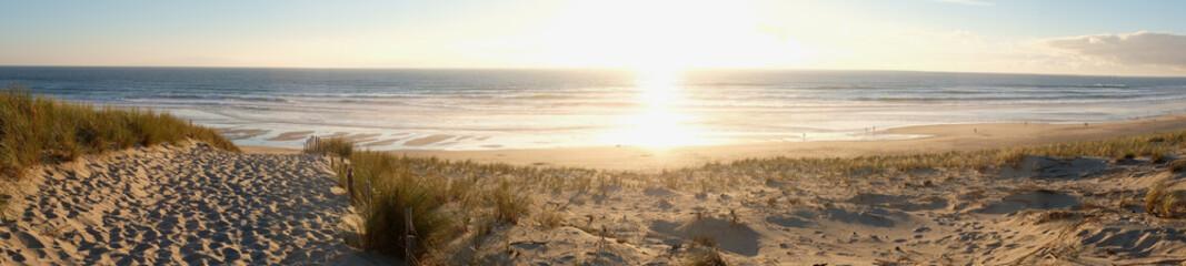 coucher de soleil dans la forêt pres de la dune de plage