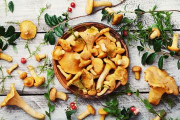Still life with chanterelle mushroomsand herbs