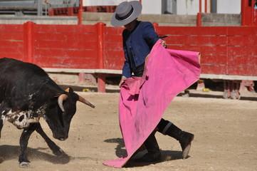 Torero dans l'arene