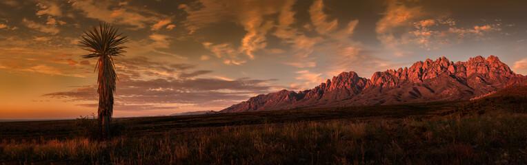 Organ Mountains Panorama, Sunset