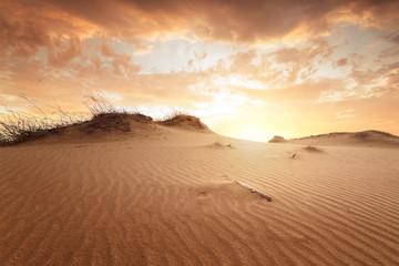 sunset in the desert / sand dune bright sunset colorful sky
