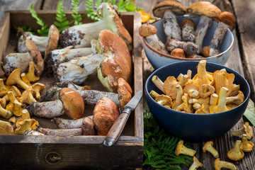 Raw wild mushrooms straight from the forest