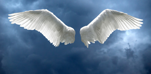 Angel wings with stormy sky background