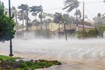 Huragan Irma i tropikalna burza w Fort Lauderdale na Florydzie.