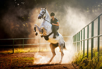 Woman riding a horse in dust, beautiful pose on hind legs
