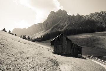 prati di Croda Rossa - Dolomiti di sesto