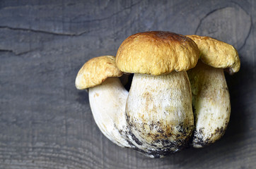 Boletus edulis mushrooms on old wooden background.Autumn Cep Mushrooms.Cooking delicious organic mushrooms.Gourmet food.Selective focus.
