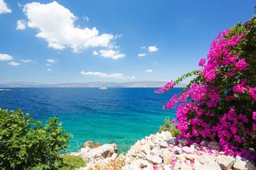 Śródziemnomorski krajobraz. Błękitne niebo i czyste wody z pięknymi kwiatami na pierwszym planie