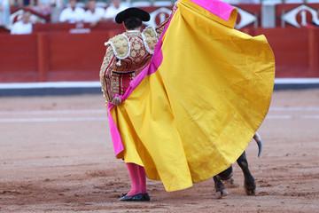 Torero y toro en la plaza