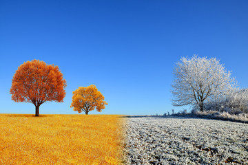 Autumn and winter landscape with blue sky. Concept of change season.