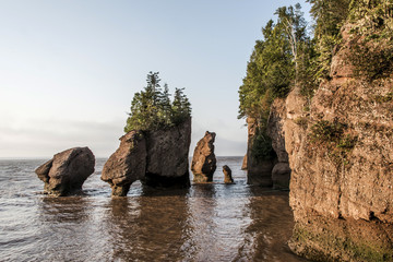 Sunrise famous Hopewell Rocks geologigal formations at low tide biggest tidal wave Fundy Bay New Brunswick Canada