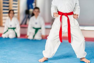 Taekwondo instructor working with boy