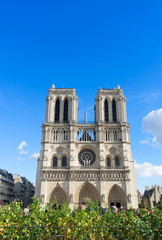 facade of Notre Dame cathedral church, Paris, France