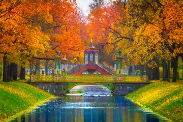 Trees with yellow and red foliage. Autumn Park. The city of Push