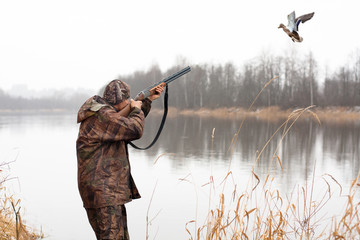 myśliwy strzelający do latającej kaczki