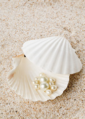 Multiple pearls in sea shell on sand