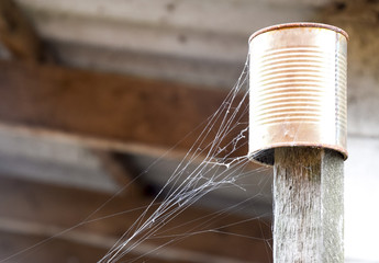 Web on an old can on a stick. A sleight of a spider's net.