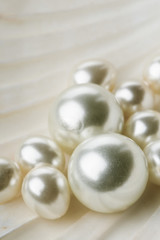 Multiple pearls in sea shell close up