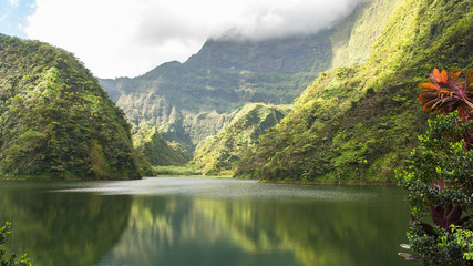 Tahiti in French Polynesia, Vaihiria lake in the Papenoo valley in the mountains, luxuriant bushy vegetation