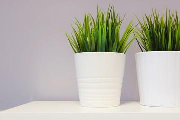 Green Artificial Plants in White Porcelain Pots