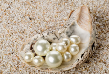 Multiple pearls in oyster sea shell on sand