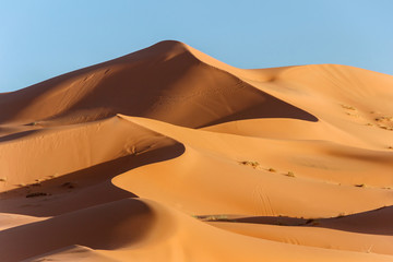 golden sand dune in sahara desert