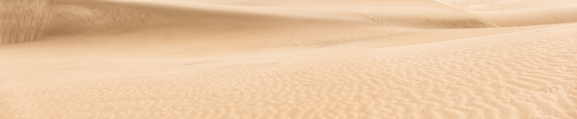 Panorama of sand desert
