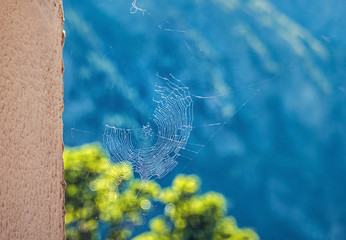 Beautiful spider web next to a wall