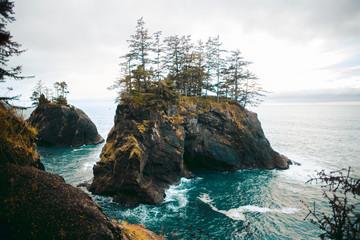 Rock in the Sea | Samuel H. Boardman State Scenic Corridor