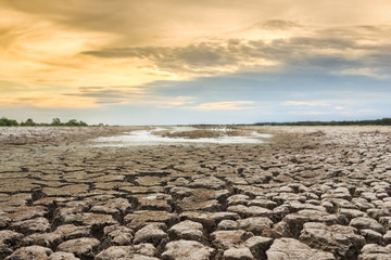 Water crisis on cracked earth near drying